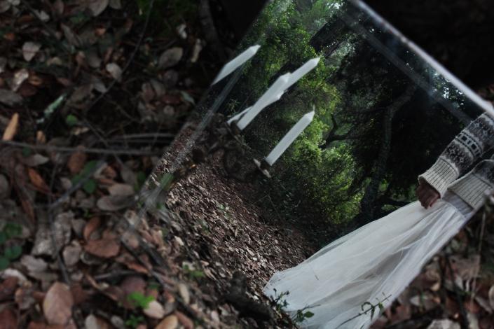 skog7